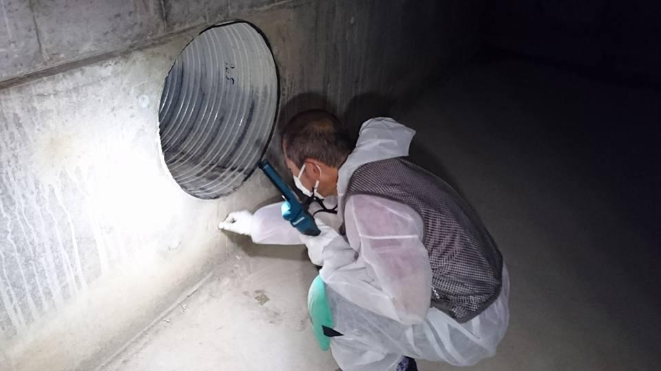 マンション地下ピットの調査