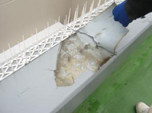 屋上防水の不具合事例2